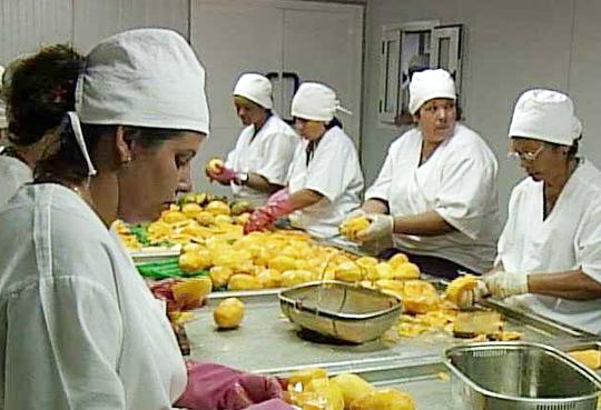 mercado y procesamiento de las frutas.